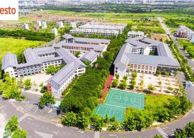 hệ thống trường học citiesto